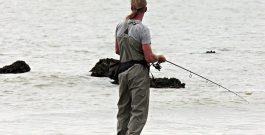 Каква въдица за хищни риби да си изберем
