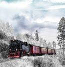 Българите продължават да пътуват активно, въпреки пандемията