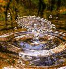 Доброволци ще чистят река Струма
